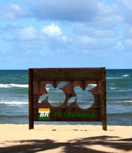 Progetto Tamar per la salvaguardia delle tartarughe
