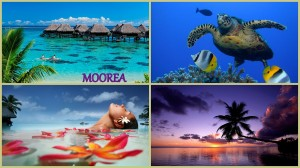 Collage Moorea
