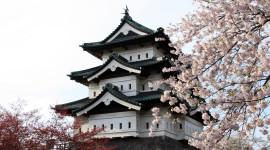 Il festival rosa di Hirosaki