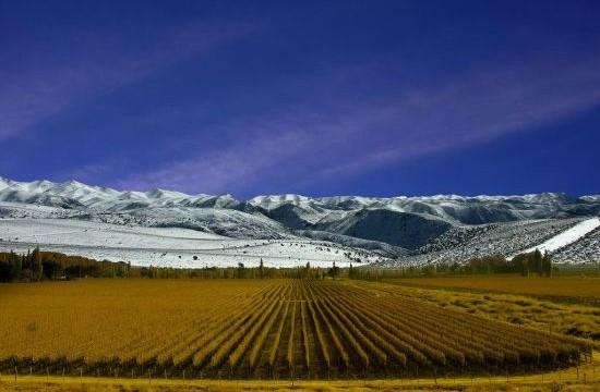 Argentina, i Vini di Salta