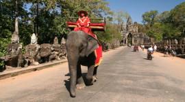 Laos e Cambogia: le lanterne del Mekong